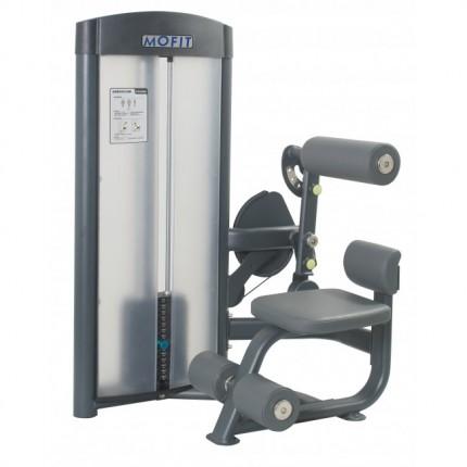 Máy tập cơ bụng PC 0909