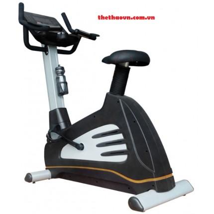 Xe đạp tập thể dục yên ngồi A 1100G